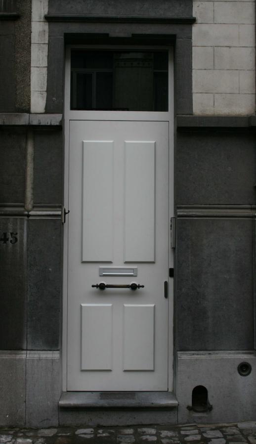 Menuiserie métallique sur une porte d'entrée